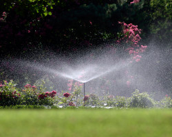Landscape Irrigation Systems by Gordon's Landscapes image